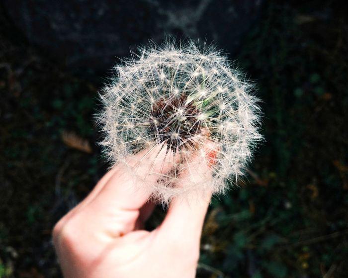 spiritual trauma counselling